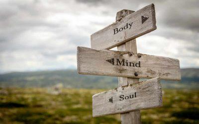 Freud: le schéma topiqueentre corps et psyché.
